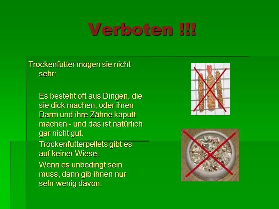Verboten !!.