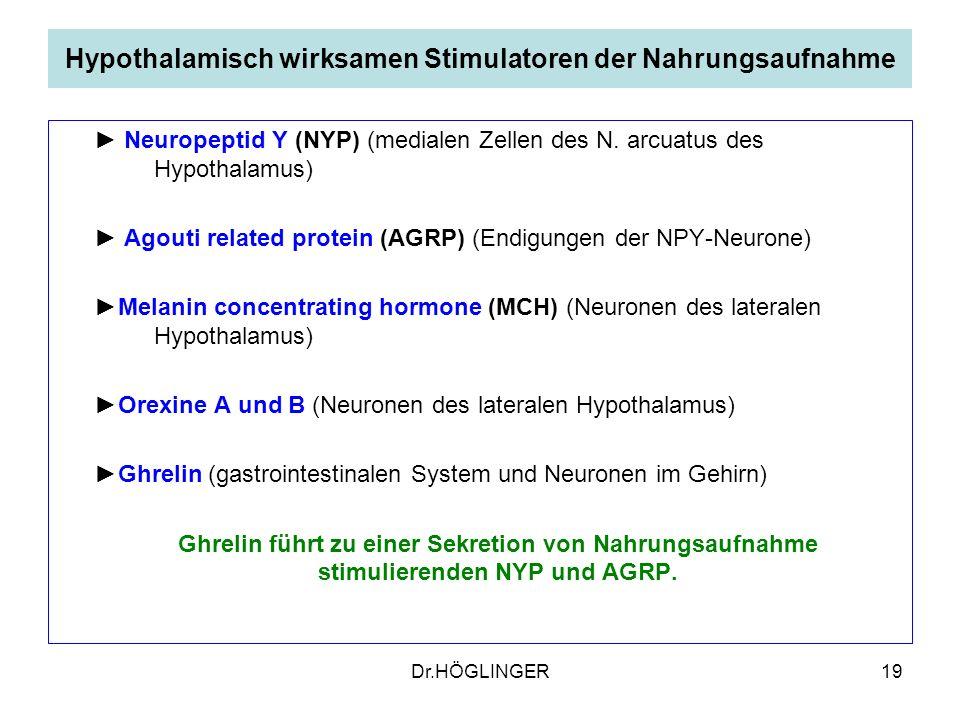19 Hypothalamisch wirksamen Stimulatoren der Nahrungsaufnahme Neuropeptid Y (NYP) (medialen Zellen des N.