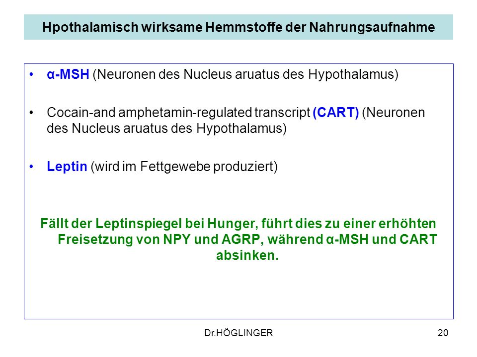 20 Hpothalamisch wirksame Hemmstoffe der Nahrungsaufnahme α-MSH (Neuronen des Nucleus aruatus des Hypothalamus) Cocain-and amphetamin-regulated transc