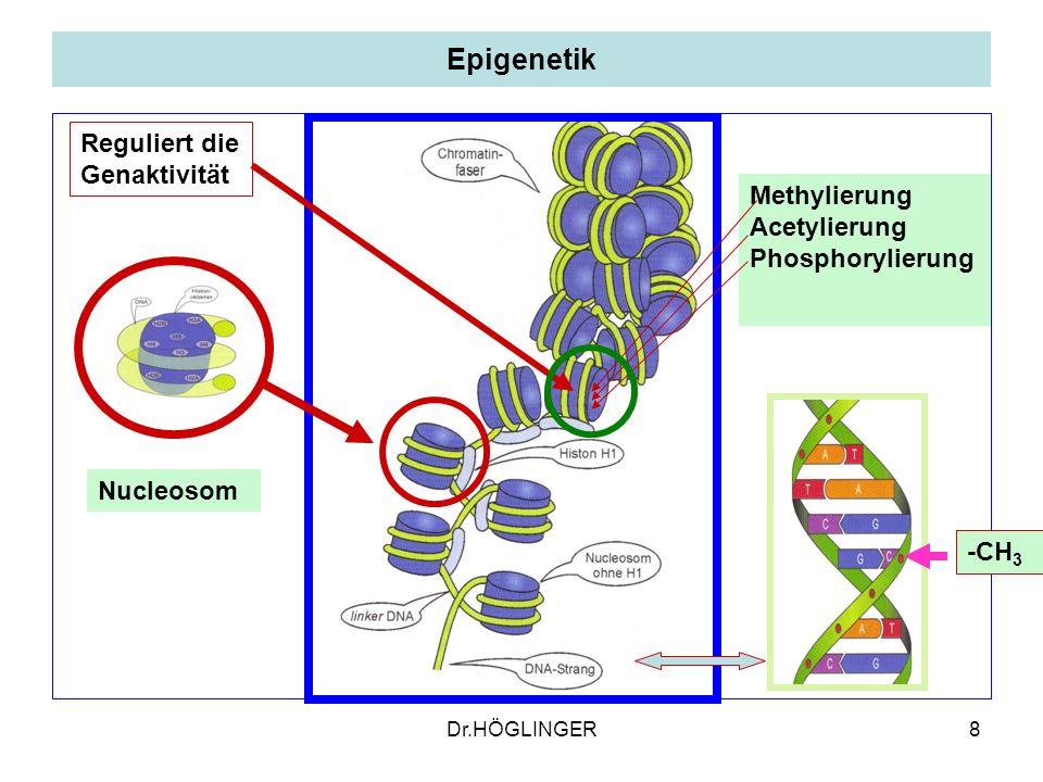 8 Epigenetik Nucleosom Methylierung Acetylierung Phosphorylierung -CH 3 Reguliert die Genaktivität Dr.HÖGLINGER