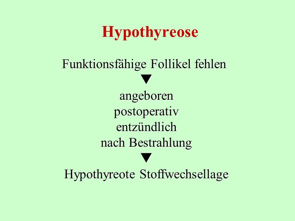 Hypothyreose Funktionsfähige Follikel fehlen angeborenpostoperativentzündlich nach Bestrahlung Hypothyreote Stoffwechsellage