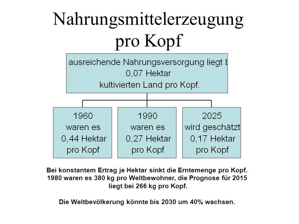 Nahrungsmittelerzeugung pro Kopf Bei konstantem Ertrag je Hektar sinkt die Erntemenge pro Kopf. 1980 waren es 380 kg pro Weltbewohner, die Prognose fü