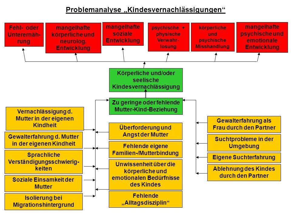 Problemanalyse Kindesvernachlässigungen mangelhafte körperliche und neurolog. Entwicklung mangelhafte psychische und emotionale Entwicklung mangelhaft