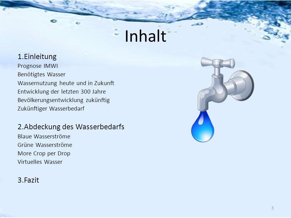 Inhalt 1.Einleitung Prognose IMWI Benötigtes Wasser Wassernutzung heute und in Zukunft Entwicklung der letzten 300 Jahre Bevölkerungsentwicklung zukün