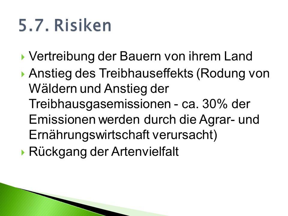 Vertreibung der Bauern von ihrem Land Anstieg des Treibhauseffekts (Rodung von Wäldern und Anstieg der Treibhausgasemissionen - ca. 30% der Emissionen