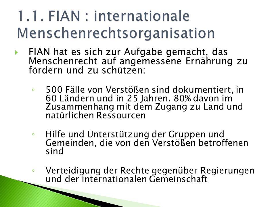FIAN fördert: die Überwachung der nationalen und der internationalen Politik die Zusammenarbeit mit internationalen Menschenrechtsorganisationen (wie die brasilianische Organisation Zentrum für Menschenrechte, der Interamerikanische Ausschuss für Menschenrechte, der UN-Auschuss über Wirtschaftliche, Soziale und Kulturelle Rechte, etc.) die Schaffung neuer internationaler Menschenrechtsnormen (CG 12, freiwillige Richtlinien und Protokolle, grenzüberschreitende Vorschriften)