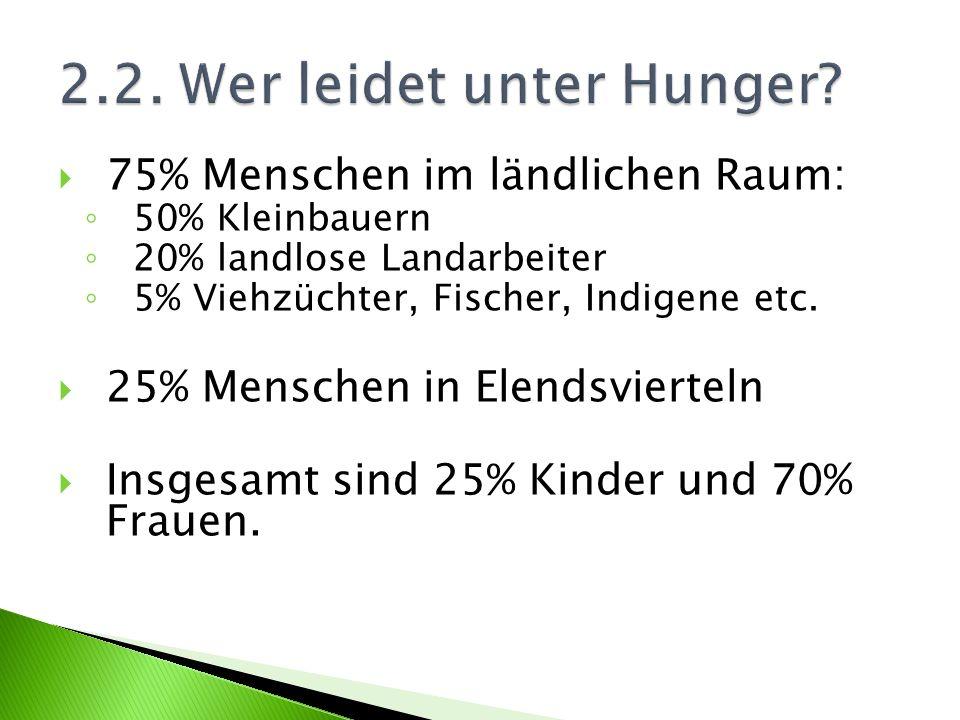 75% Menschen im ländlichen Raum: 50% Kleinbauern 20% landlose Landarbeiter 5% Viehzüchter, Fischer, Indigene etc. 25% Menschen in Elendsvierteln Insge