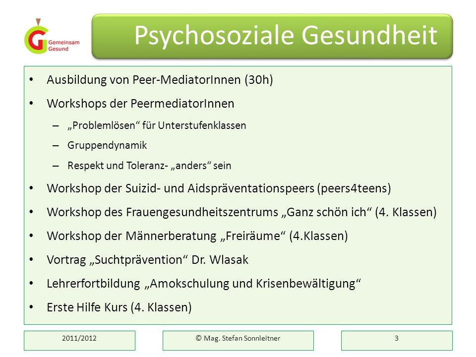 Ausbildung von Peer-MediatorInnen (30h) Workshops der PeermediatorInnen – Problemlösen für Unterstufenklassen – Gruppendynamik – Respekt und Toleranz-