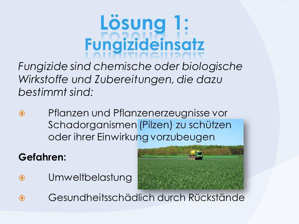 Fungizide sind chemische oder biologische Wirkstoffe und Zubereitungen, die dazu bestimmt sind: Pflanzen und Pflanzenerzeugnisse vor Schadorganismen (Pilzen) zu schützen oder ihrer Einwirkung vorzubeugen Gefahren: Umweltbelastung Gesundheitsschädlich durch Rückstände