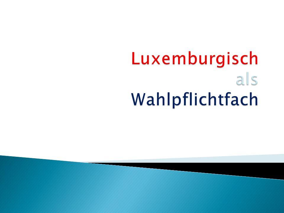 ° Allgemeine Themen Berufe, Sitten und Bräuche, Geografie, Reisen, gesunde Ernährung, … differenziert lernen ° Luxemburgische Kultur Sprache Küche Theater