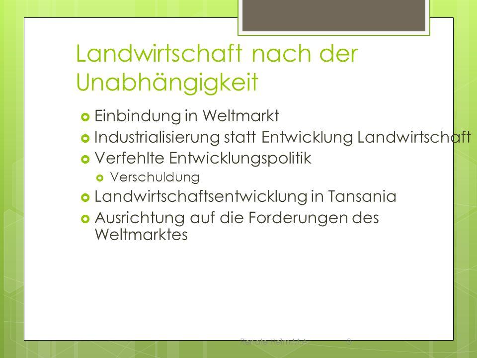 Renate Helm M.A.3 Landwirtschaft nach der Unabhängigkeit Einbindung in Weltmarkt Industrialisierung statt Entwicklung Landwirtschaft Verfehlte Entwick