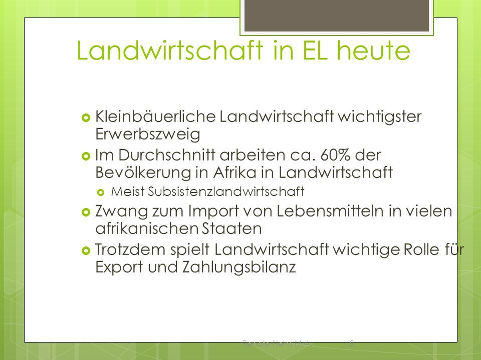 Renate Helm M.A.8 Landwirtschaft in EL heute Kleinbäuerliche Landwirtschaft wichtigster Erwerbszweig Im Durchschnitt arbeiten ca. 60% der Bevölkerung