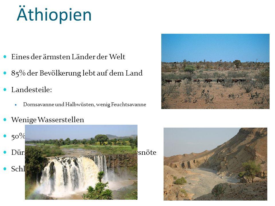 Äthiopien Dornsavanne Eines der ärmsten Länder der Welt 85% der Bevölkerung lebt auf dem Land Landesteile: Dornsavanne und Halbwüsten, wenig Feuchtsav