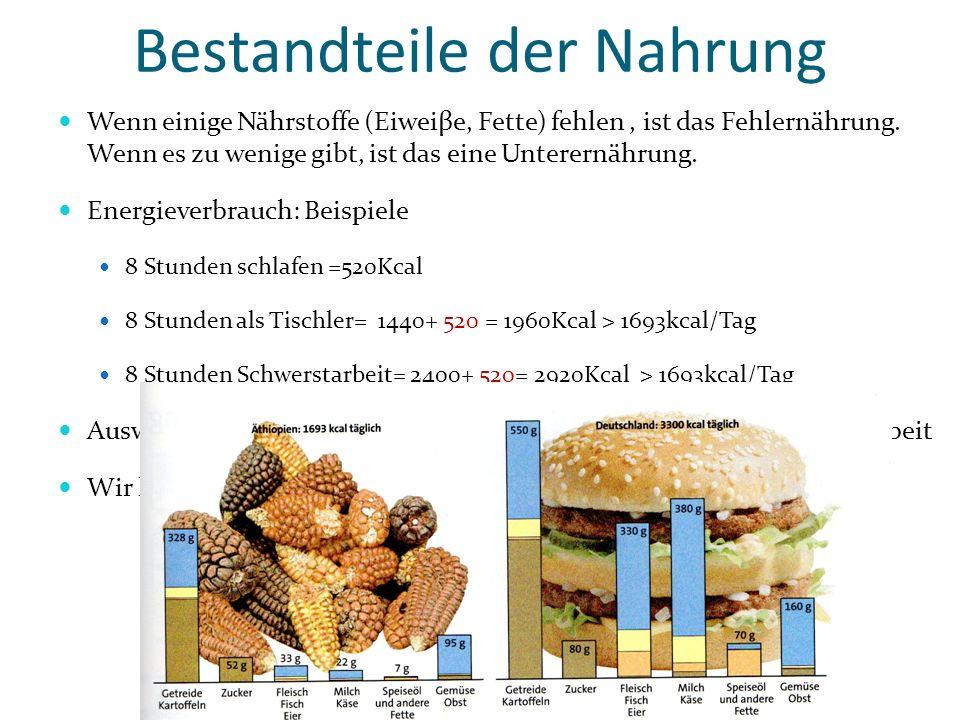 Bestandteile der Nahrung Wenn einige Nährstoffe (Eiweiβe, Fette) fehlen, ist das Fehlernährung. Wenn es zu wenige gibt, ist das eine Unterernährung. E