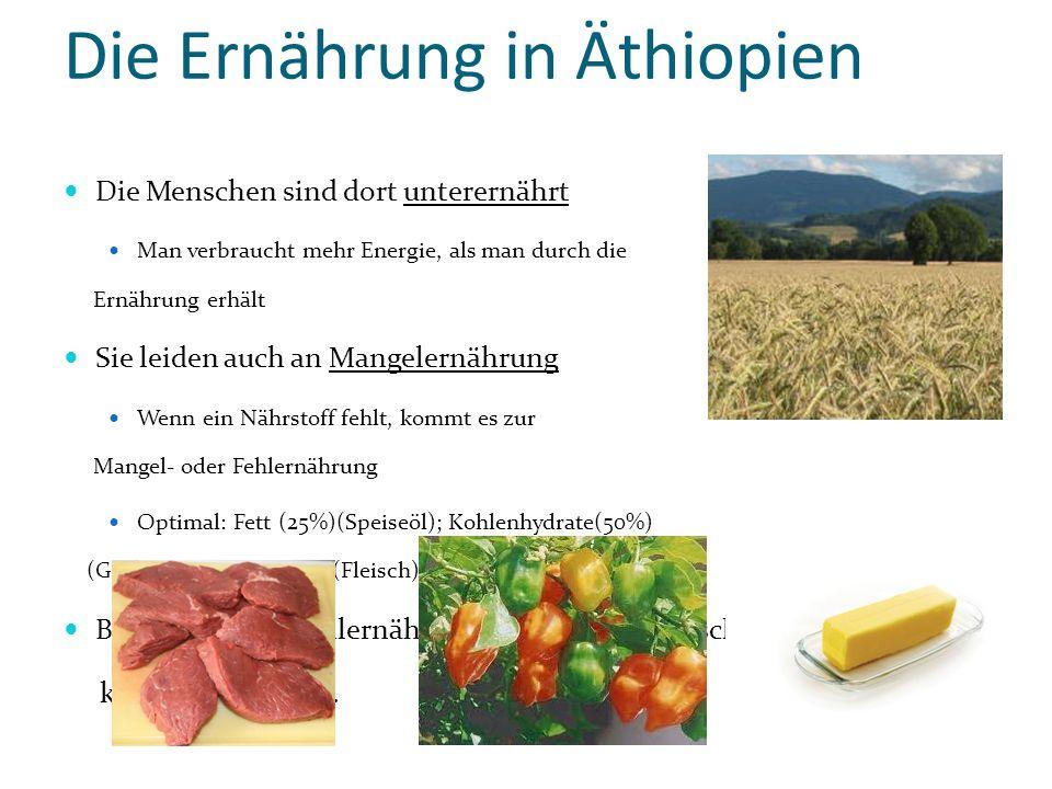 Die Ernährung in Äthiopien Die Menschen sind dort unterernährt Man verbraucht mehr Energie, als man durch die Ernährung erhält Sie leiden auch an Mang