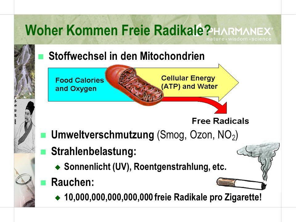 Woher Kommen Freie Radikale? n Umweltverschmutzung (Smog, Ozon, NO 2 ) n Strahlenbelastung: Sonnenlicht (UV), Roentgenstrahlung, etc. n Rauchen: 10,00