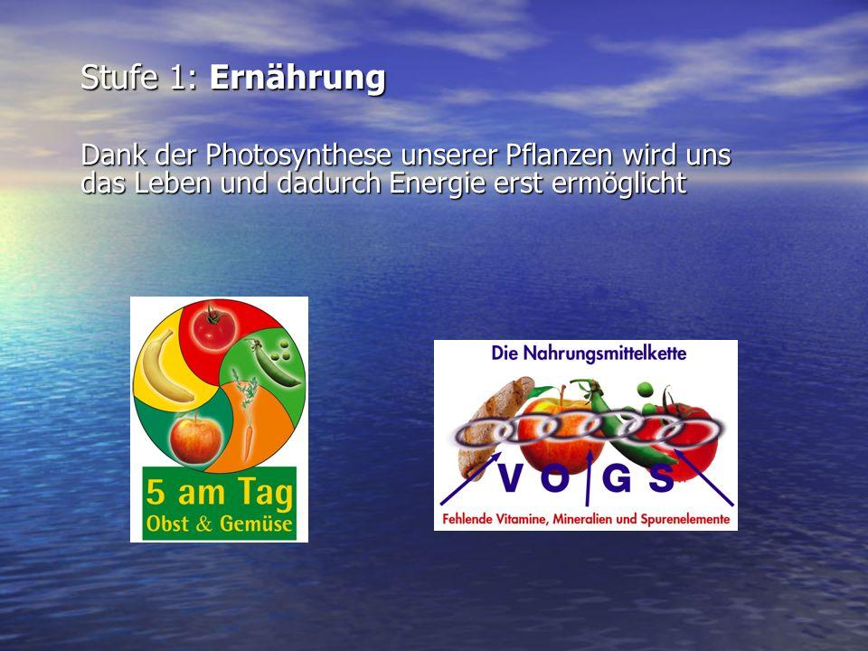 Stufe 1: Ernährung Dank der Photosynthese unserer Pflanzen wird uns das Leben und dadurch Energie erst ermöglicht