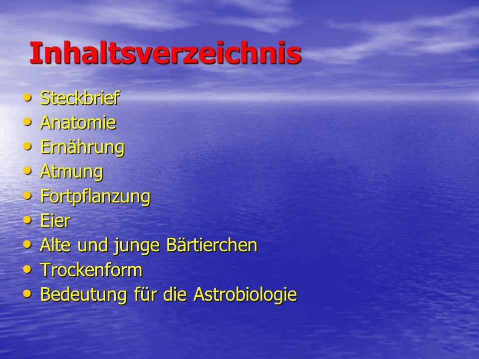 Inhaltsverzeichnis Steckbrief Steckbrief Anatomie Anatomie Ernährung Ernährung Atmung Atmung Fortpflanzung Fortpflanzung Eier Eier Alte und junge Bärt