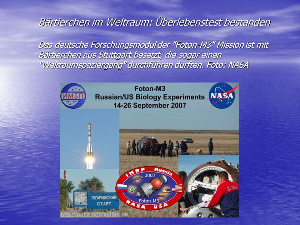 Bärtierchen im Weltraum: Überlebenstest bestanden Das deutsche Forschungsmodul der