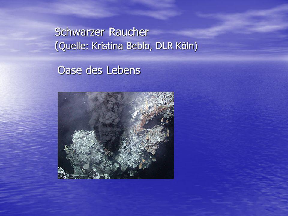 Schwarzer Raucher ( Quelle: Kristina Beblo, DLR Köln) Oase des Lebens Schwarzer Raucher ( Quelle: Kristina Beblo, DLR Köln) Oase des Lebens