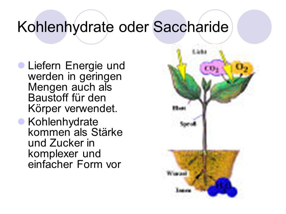 Kohlenhydrate oder Saccharide Liefern Energie und werden in geringen Mengen auch als Baustoff für den Körper verwendet. Kohlenhydrate kommen als Stärk