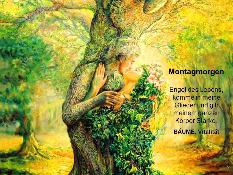 Samstagmorgen Die Mutter Erde und ich sind Eins.