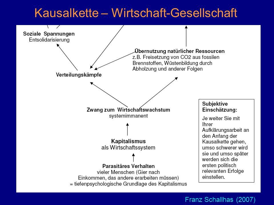 Franz Schallhas (2007) Kausalkette – Wirtschaft-Gesellschaft