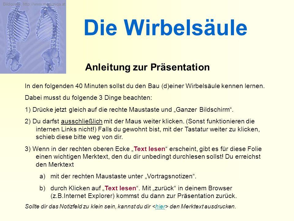 Die Wirbelsäule Anleitung zur Präsentation In den folgenden 40 Minuten sollst du den Bau (d)einer Wirbelsäule kennen lernen. Dabei musst du folgende 3