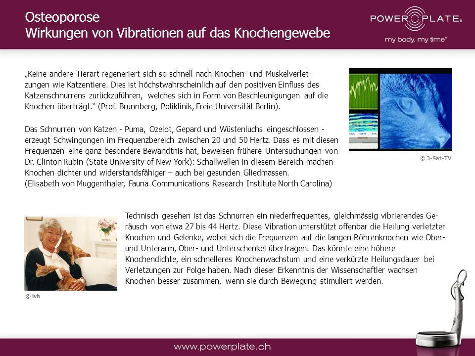 Copyright Power Plate Deutschland Keine andere Tierart regeneriert sich so schnell nach Knochen- und Muskelverlet- zungen wie Katzentiere.