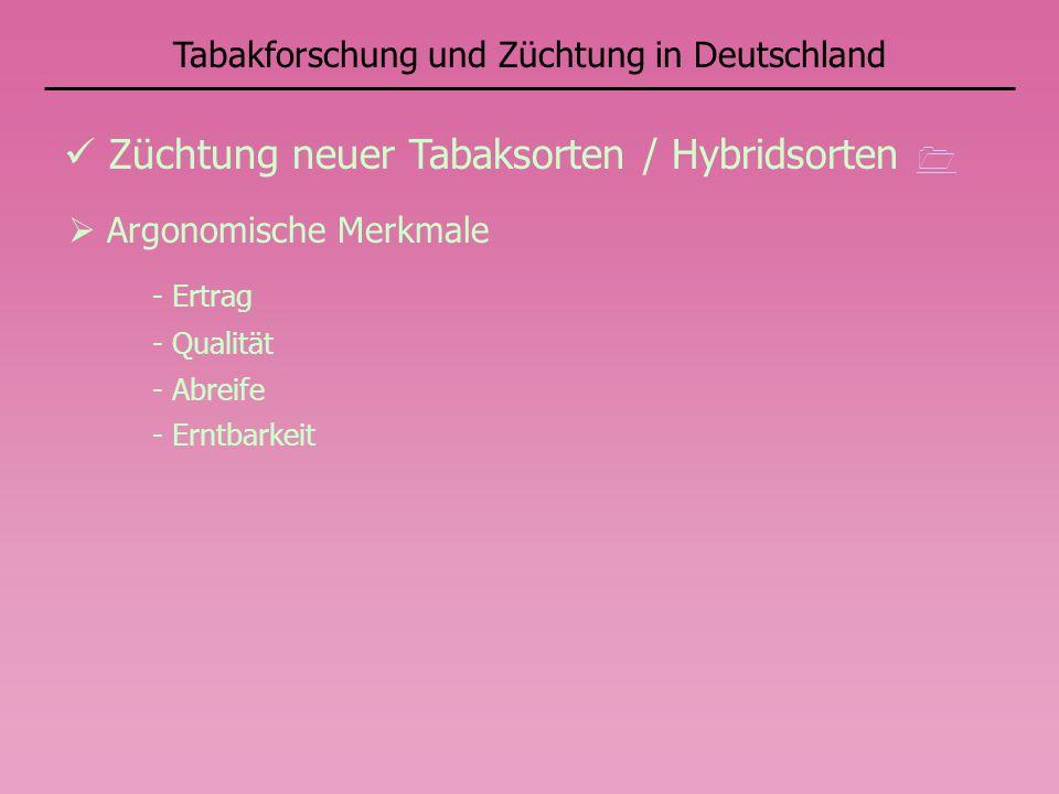 Tabakforschung und Züchtung in Deutschland Züchtung neuer Tabaksorten / Hybridsorten Argonomische Merkmale - Ertrag - Qualität - Abreife - Erntbarkeit