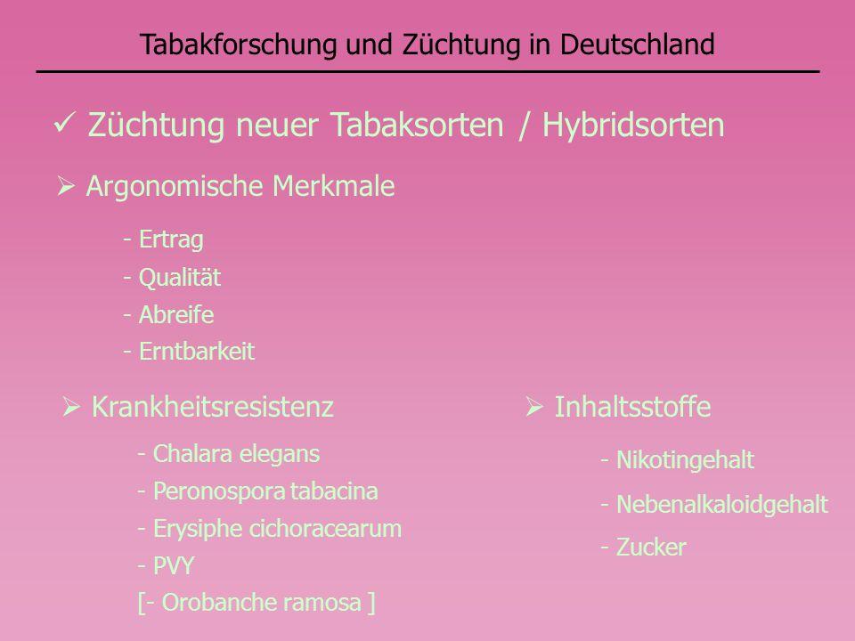 Tabakforschung und Züchtung in Deutschland Züchtung neuer Tabaksorten / Hybridsorten Krankheitsresistenz - Chalara elegans - Peronospora tabacina - Er
