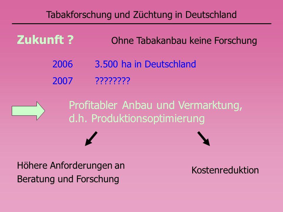 Tabakforschung und Züchtung in Deutschland Ohne Tabakanbau keine Forschung Zukunft ? 2006 3.500 ha in Deutschland 2007 ???????? Profitabler Anbau und