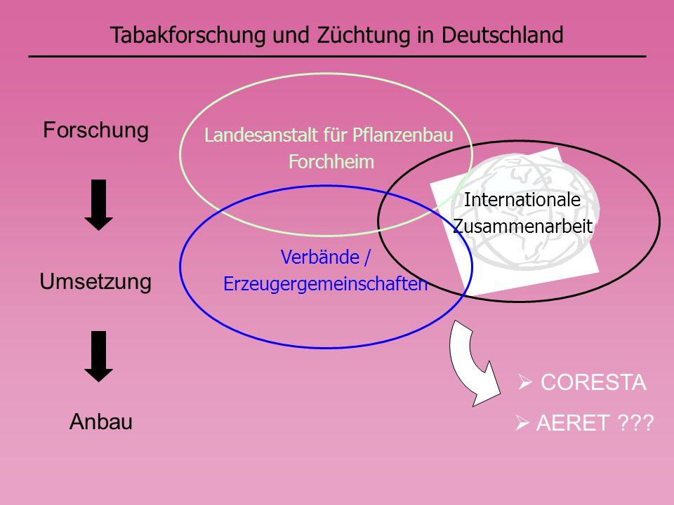 Internationale Zusammenarbeit Tabakforschung und Züchtung in Deutschland Forschung Umsetzung Anbau Landesanstalt für Pflanzenbau Forchheim Verbände / Erzeugergemeinschaften CORESTA AERET ???