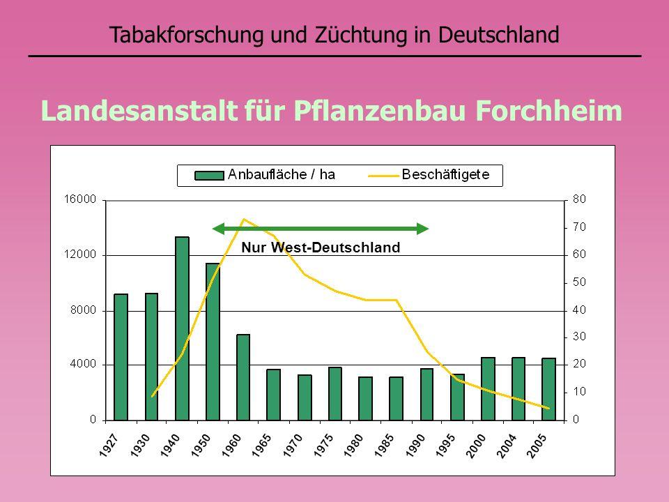 Tabakforschung und Züchtung in Deutschland Landesanstalt für Pflanzenbau Forchheim Nur West-Deutschland
