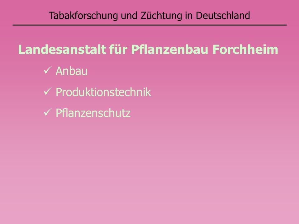 Tabakforschung und Züchtung in Deutschland Landesanstalt für Pflanzenbau Forchheim Anbau Produktionstechnik Pflanzenschutz