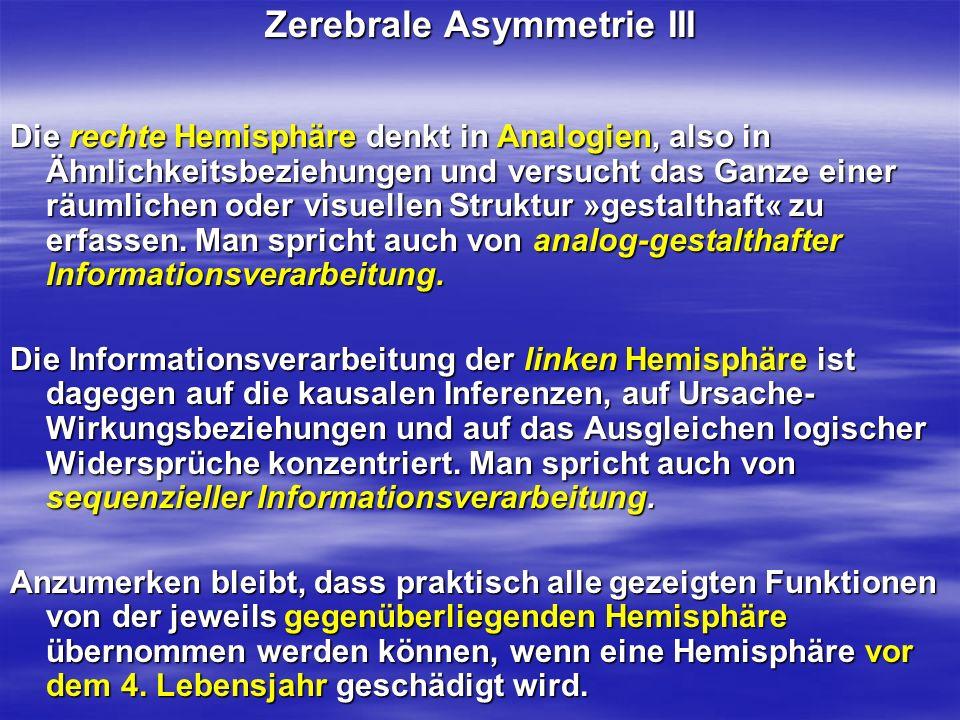 Zerebrale Asymmetrie III Die rechte Hemisphäre denkt in Analogien, also in Ähnlichkeitsbeziehungen und versucht das Ganze einer räumlichen oder visuel