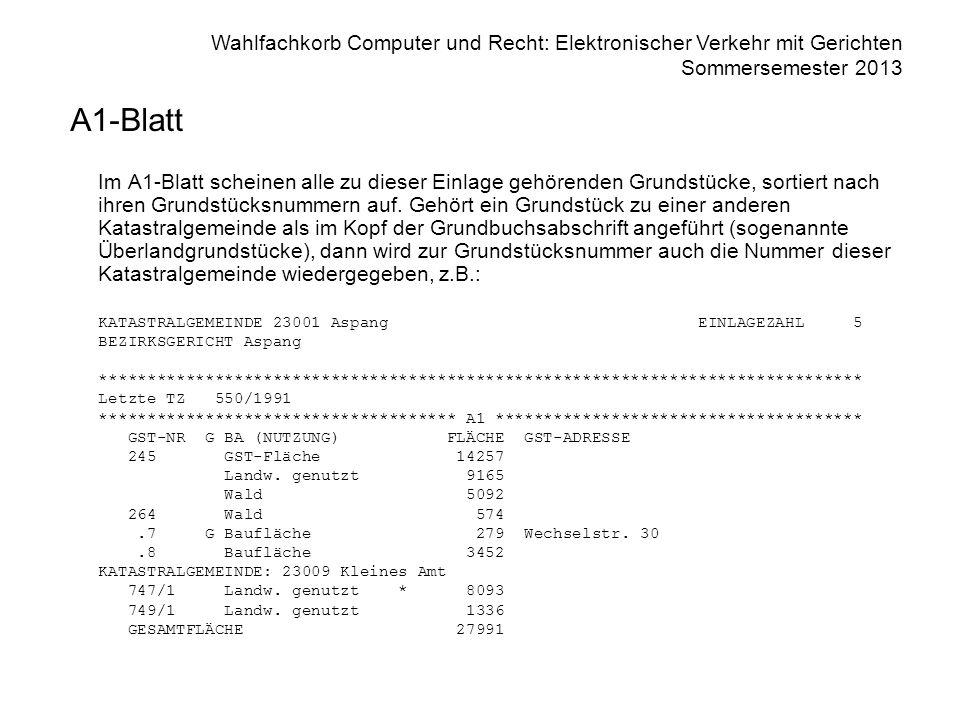 Wahlfachkorb Computer und Recht: Elektronischer Verkehr mit Gerichten Sommersemester 2013 A1-Blatt Im A1-Blatt scheinen alle zu dieser Einlage gehören