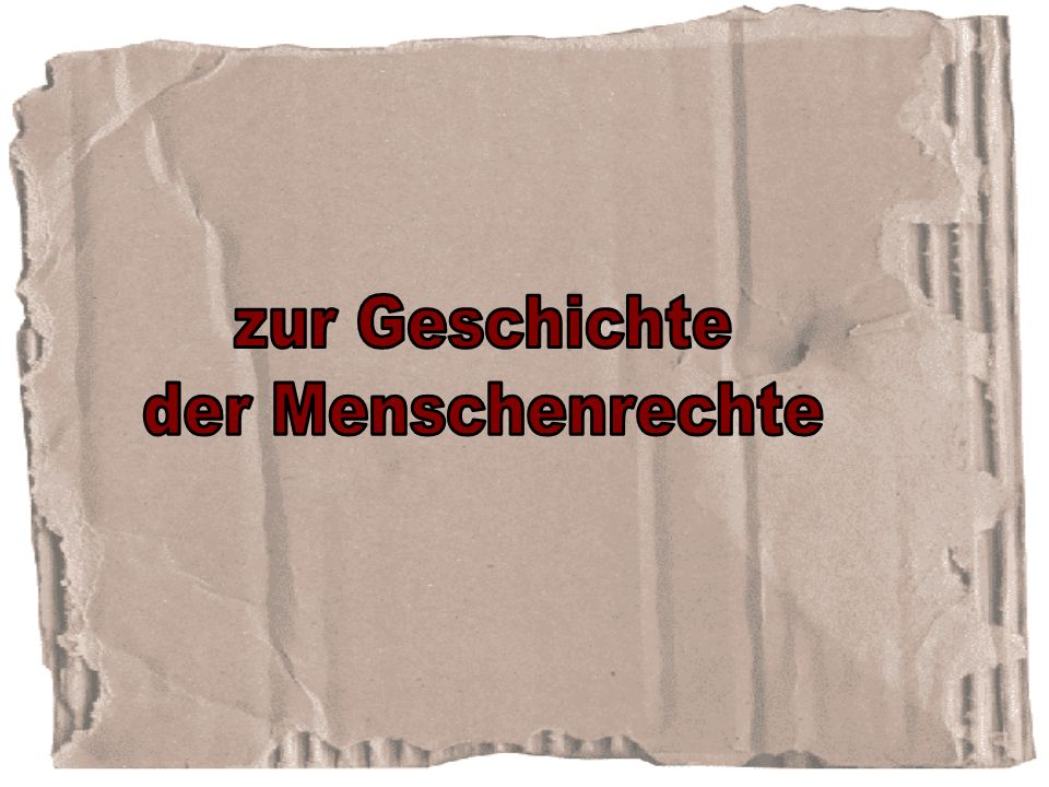 Salzburger Menschenrechtsbericht zum Landesfeiertag am 24. September 2003-2008