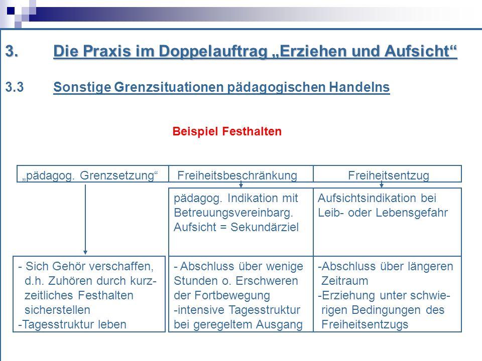 3.Die Praxis im Doppelauftrag Erziehen und Aufsicht 3.3 Sonstige Grenzsituationen pädagogischen Handelns Beispiel Festhalten pädagog.