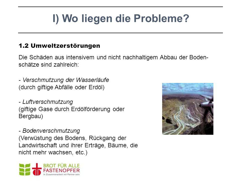 1.2 Umweltzerstörungen Die Schäden aus intensivem und nicht nachhaltigem Abbau der Boden- schätze sind zahlreich: - Verschmutzung der Wasserläufe (dur