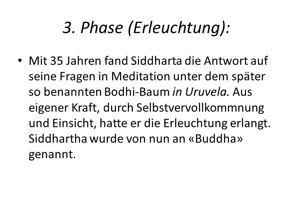 3. Phase (Erleuchtung): Mit 35 Jahren fand Siddharta die Antwort auf seine Fragen in Meditation unter dem später so benannten Bodhi-Baum in Uruvela. A
