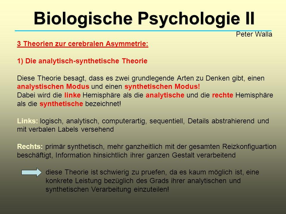Biologische Psychologie II Peter Walla 3 Theorien zur cerebralen Asymmetrie: 1) Die analytisch-synthetische Theorie Diese Theorie besagt, dass es zwei grundlegende Arten zu Denken gibt, einen analystischen Modus und einen synthetischen Modus.