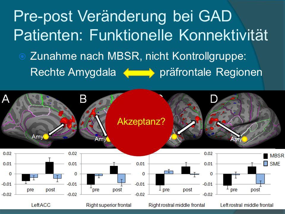 Zunahme nach MBSR, nicht Kontrollgruppe: Rechte Amygdala präfrontale Regionen Pre-post Veränderung bei GAD Patienten: Funktionelle Konnektivität Akzep