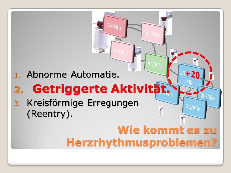 1. Abnorme Automatie. 2. Getriggerte Aktivität. 3. Kreisförmige Erregungen (Reentry).