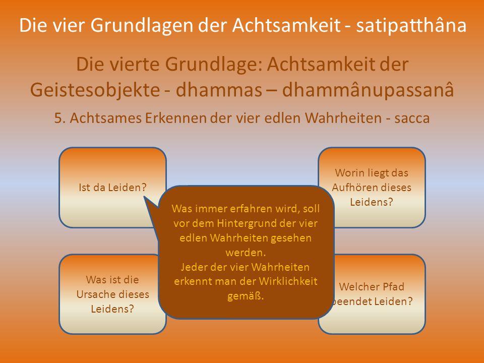Die vier Grundlagen der Achtsamkeit - satipatthâna Die vierte Grundlage: Achtsamkeit der Geistesobjekte - dhammas – dhammânupassanâ 5. Achtsames Erken