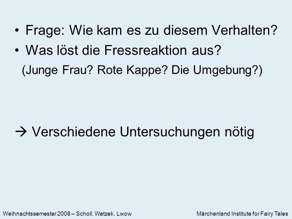 Märchenland Institute for Fairy Tales Weihnachtssemester 2008 – Scholl, Watzek, Lwow Frage: Wie kam es zu diesem Verhalten.