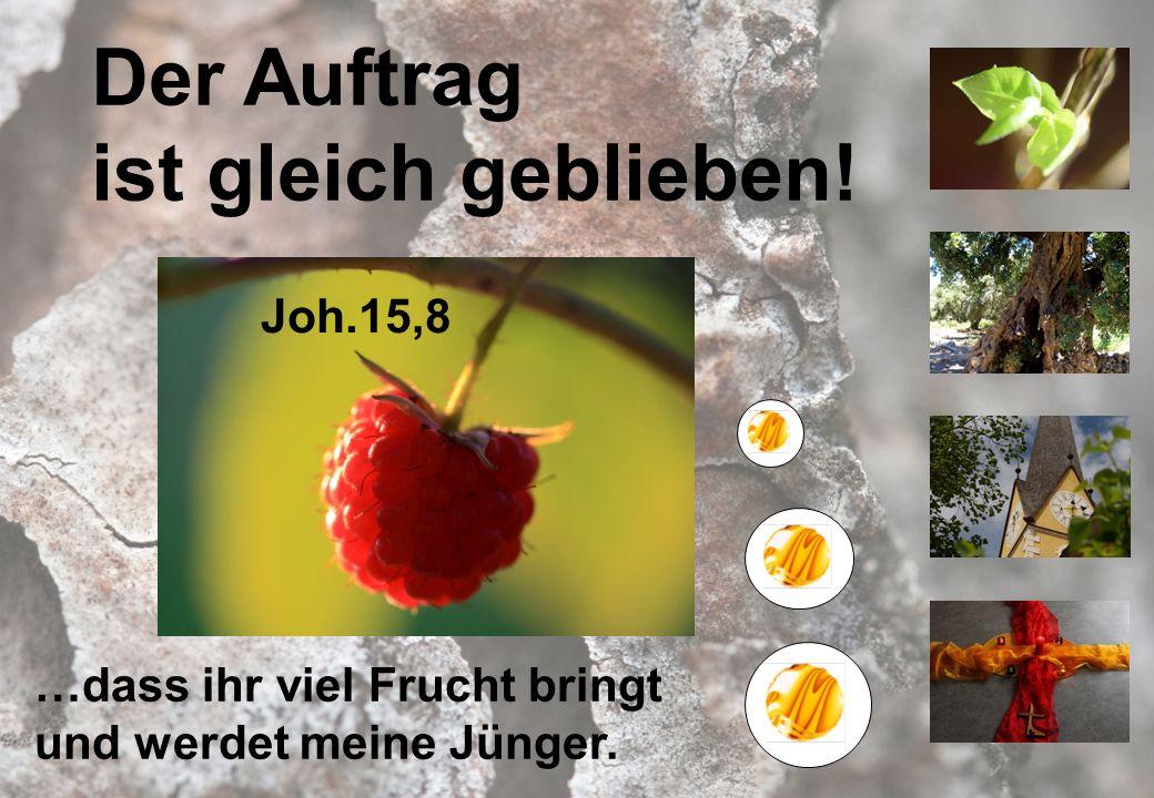 Der Auftrag ist gleich geblieben! Joh.15,8 …dass ihr viel Frucht bringt und werdet meine Jünger.