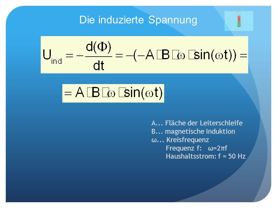 Die induzierte Spannung A... Fläche der Leiterschleife B... magnetische Induktion ω... Kreisfrequenz Frequenz f: ω=2πf Haushaltsstrom: f = 50 Hz