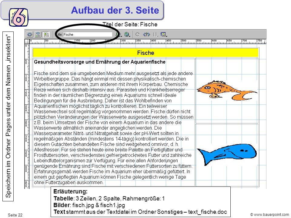 © www.bauerpoint.com Seite 22 Aufbau der 3. Seite Titel der Seite: Fische Speichern im Ordner Pages unter dem Namen insekten Erläuterung: Tabelle: 3 Z