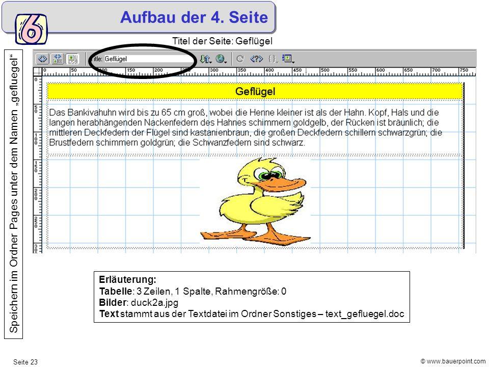 © www.bauerpoint.com Seite 23 Aufbau der 4. Seite Titel der Seite: Geflügel Erläuterung: Tabelle: 3 Zeilen, 1 Spalte, Rahmengröße: 0 Bilder: duck2a.jp
